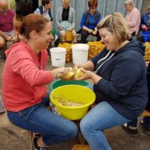 Epluchage des pommes de terre 1