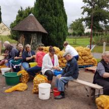 Epluchage des pommes de terre 5